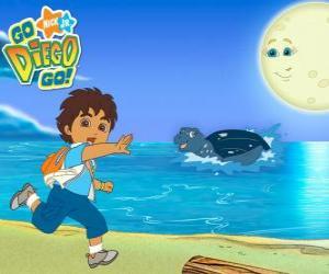 Układanka Diego na plaży i żółwia morskiego w wodzie