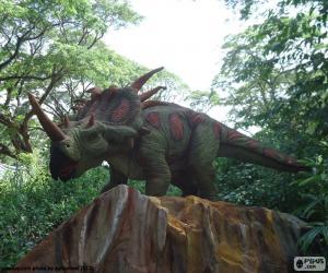 Układanka dinozaur Triceratops trzy rogi