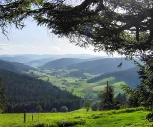 Układanka Dolina w Schwarzwald, Niemcy