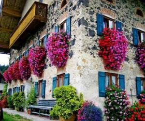 Układanka Dom na wiosnę z kwiatami w oknach