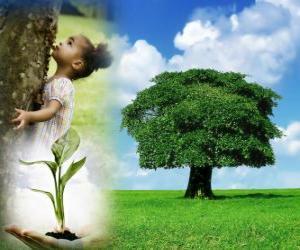 Układanka Drzewo dzień odbywa się 10 października w Polska. W innych krajach jest świętować w różnych terminach w odpowiednim sezonie sadzenia