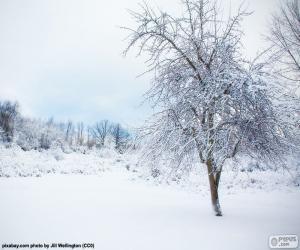 Układanka Drzewo snowy