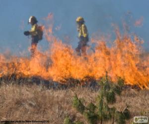 Układanka Dwóch strażaków, ogień