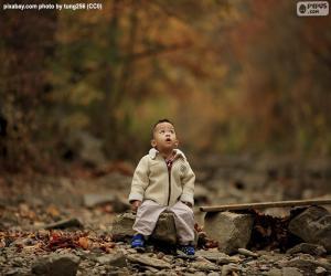 Układanka Dziecko w lesie