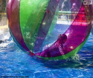 Układanka Dziewczyna na piłkę wody