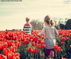 Układanka Dziewczyny, między tulipany