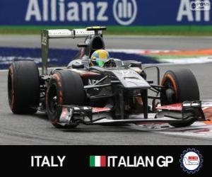 Układanka Esteban Gutiérrez - Sauber - Monza, 2013