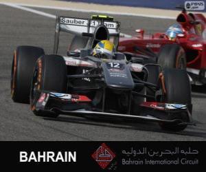 Układanka Esteban Gutierrez - Sauber - 2013 Bahrain International Circuit