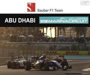 Układanka Felipe Nasr,Grand Prix Abu Zabi 2016