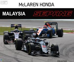 Układanka Fernando Alonso, Grand Prix Malezji 2016