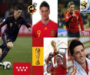 Układanka Fernando Torres (To się nam sen) Reprezentacja Hiszpanii do przodu