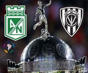 Układanka Finał Copa Libertadores 2016