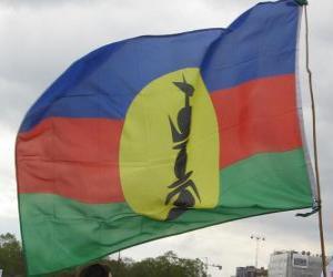 Układanka Flaga Nowej Kaledonii