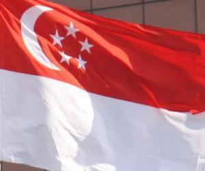 Układanka Flaga Singapuru