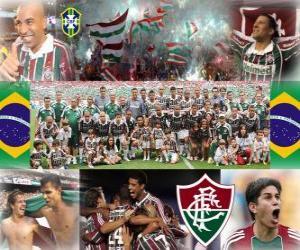 Układanka Fluminense Football Champion Club Championship w 2010 roku brazylijski