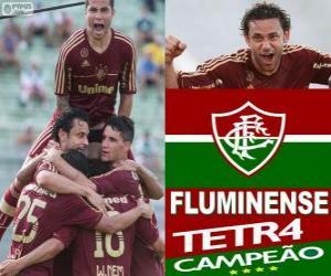 Układanka Fluminense Football Champion Club Championship w 2012 roku brazylijski