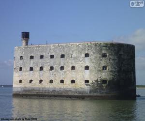 Układanka Fort Boyard, Francja