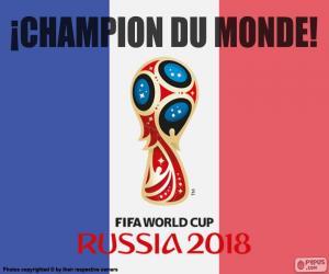 Układanka Francji, mistrz świata 2018