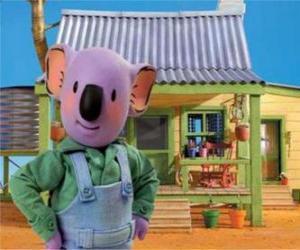 Układanka Frank jest jednym z australijskich braci koala