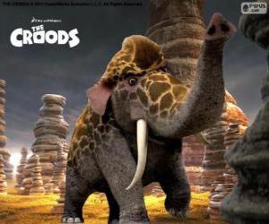 Układanka Girelephant z Krudowie, skrzyżowanie żyrafa i słoń