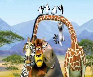 Układanka Gloria hipopotam, żyrafa Melman, lew Alex, zebra Marty z innymi bohaterami przygody