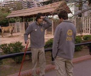Układanka Gonzalo widzi Leandro w zoo