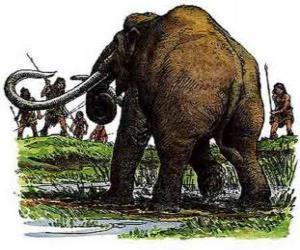 Układanka Grupy prehistorycznych ludzi uzbrojonych w dzidy w polowanie na mamuta