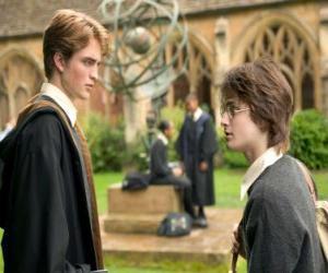 Układanka Harry Potter i jego przyjaciel Cedric Diggory