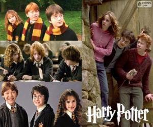 Układanka Harry Potter i jego przyjaciele Ron i Hermiona