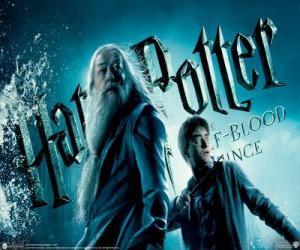 Układanka Harry Potter i Książę Półkrwi
