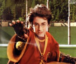 Układanka Harry Potter rzucanie piłki