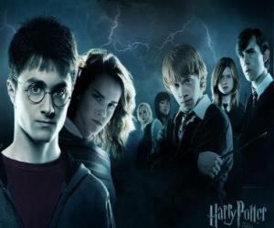 Układanka Harry Potter ze swymi przyjaciółmi
