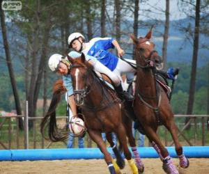 Układanka Horseball