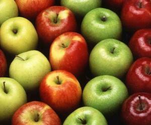 Układanka Jabłka różnych typów