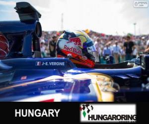 Układanka Jean-Eric Vergne - Toro Rosso - Hungaroring, 2013