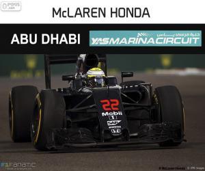 Układanka Jenson Button, Grand Prix Abu Zabi 2016