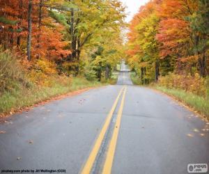 Układanka Jesienne road