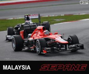 Układanka Jules Bianchi - Marussia - Sepang 2013