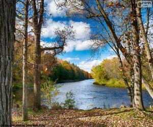Układanka Jumbo River, Stany Zjednoczone