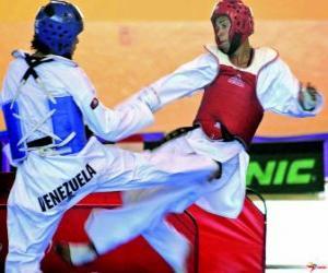 Układanka Karate - karateka praktykuje dwa
