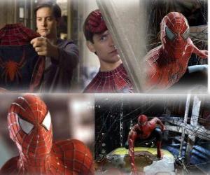 Układanka Kilka zdjęć z Spiderman