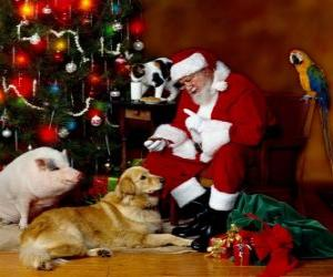 Układanka Kilka zwierząt z Santa