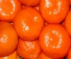 Układanka Klementyna świeże owoce