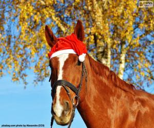 Układanka Koń z Santa Claus kapelusz