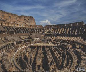 Układanka Koloseum, wnętrza