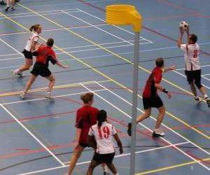 Układanka Korfbal, zwany też balonkorf jest sport zespół zagrał między dwóch zespołów chce wprowadzić piłkę do kosza.