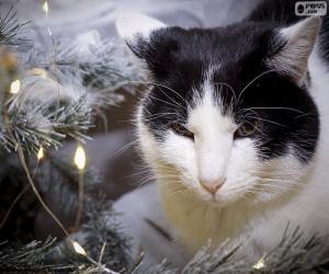 Układanka Kot na Boże Narodzenie