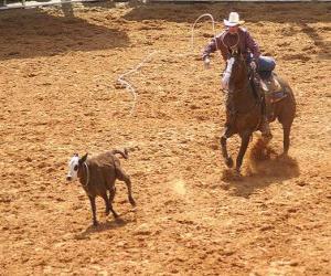 Układanka Kowboj jazdy konnej i połowu sztuk bydła z lasso