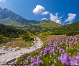 Układanka Krajobraz górski