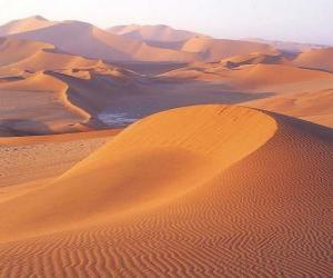Układanka krajobraz pustyni